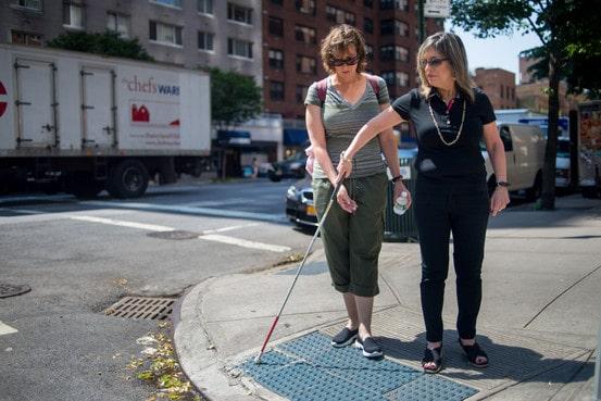 Dog Walking Jobs Wellington